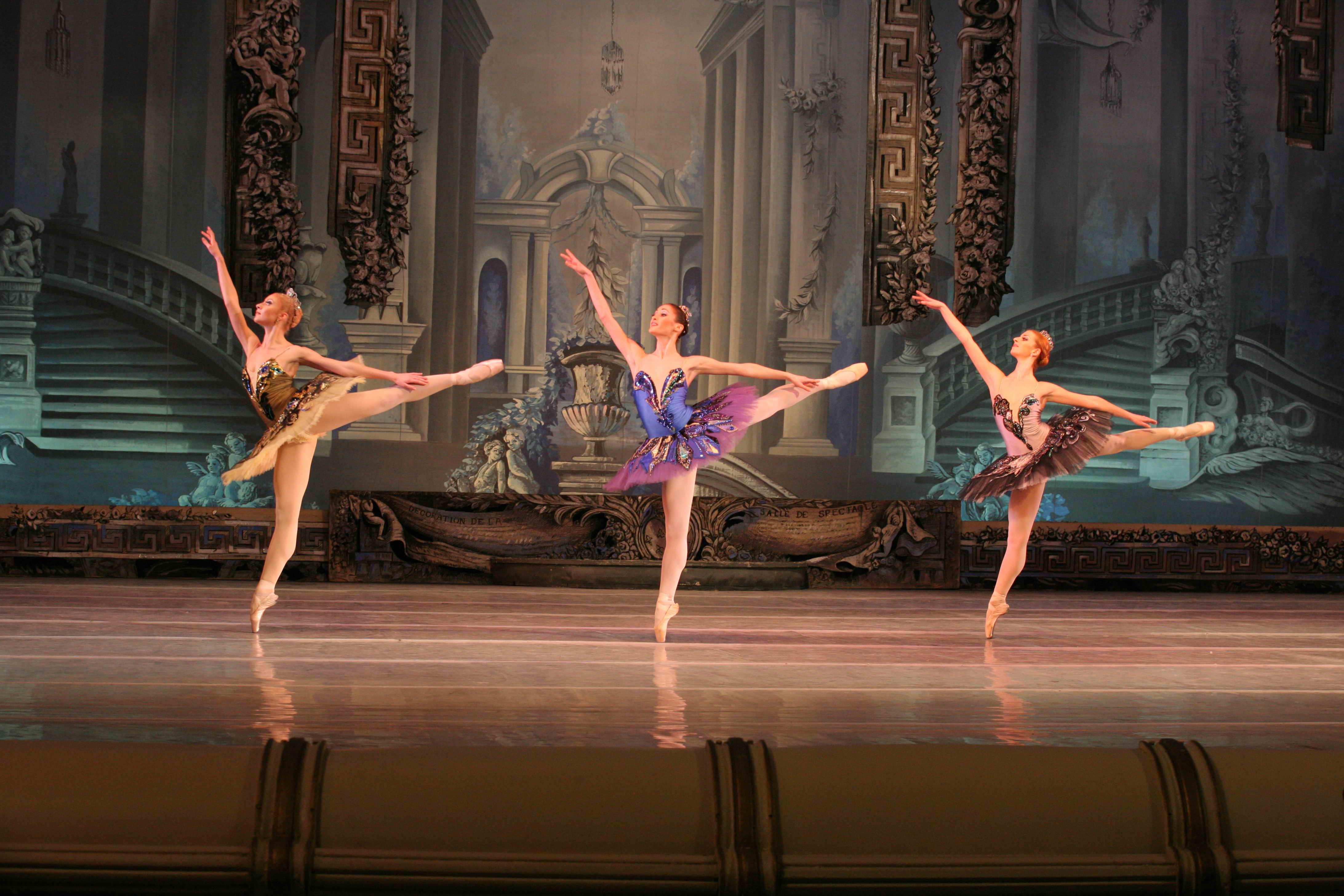 La Belle au Bois Dormant # Ballet Belle Au Bois Dormant